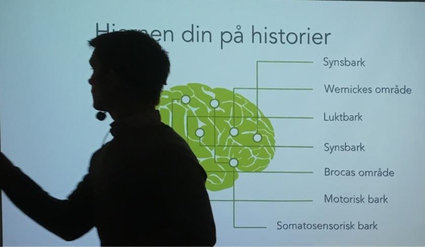 hjernen din på historier